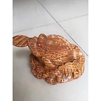 Cóc ngậm tiền vàng , gỗ huyết long, có mùi thơm, kích thước cao 8cm x ngang 11 x sâu 13cm, thích hợp để trang thần tài hoặc để bàn làm việc