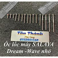 Bộ ốc lốc máy dành cho xe Wave nhỏ -Dream - 16 con