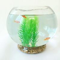 Combo bể cá tròn để bàn 20cm + phụ kiện