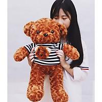 Gấu bông Tedy áo kẻ màu nâu- size 70cm
