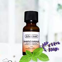 Tinh dầu Bạc hà & hoa oải hương, hương dịu nhẹ, dễ chịu không hắc mùi