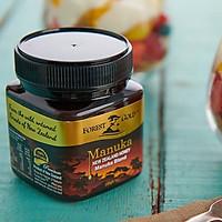 Thực phẩm chức năng Mật Ong Manuka Blend Forest Gold - New Zealand