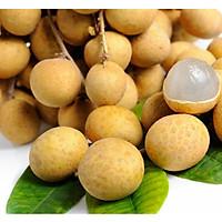 Nhãn Xuồng Đồng Tháp - Trái Lớn, Cơm Dày, Vỏ Mỏng, Thơm Ngọt - Laman Food