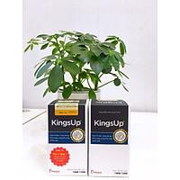 Combo 2 hộp KingsUp - Giúp bổ thận, tráng dương, tăng cường khả năng sinh lý nam
