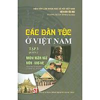 Các Dân Tộc Ở Việt Nam - Tập 3 - Quyển 2: Nhóm Ngôn Ngữ Môn - Khơ-me