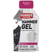 Gel uống bổ sung năng lượng - Hammer Nutrition Hammer Gel vị dâu rừng HM601