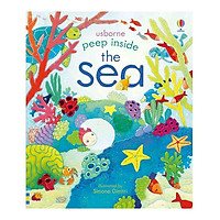 Usborne The Sea