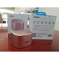 Loa Bluetooth iKANOO I609 Vỏ Kim Loại Nguyên Khối - Hàng Chính Hãng
