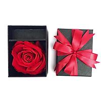 Hộp quà tặng hoa hồng sáp đựng son Valentine kích thước 12x9x7cm