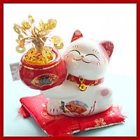 Mèo Thần tài Jinshi Ôm cây tiền phát sáng 20cm