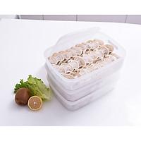 Hộp nhựa cao cấp bảo quản thực phẩm hình chữ nhật 630ml - Hàng nội địa Nhật