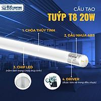 Đèn LED tuýp thủy tinh T8 1.2m - 20W - ánh sáng trắng