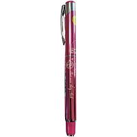 Bút Máy Thầy Ánh SH-035 (Ngòi thường) - Giao màu ngẫu nhiên