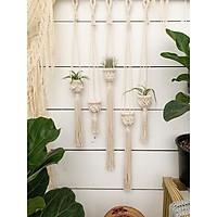 1 giỏ treo cây không khí giỏ trang trí treo tường-mẫu ngẫu nhiên