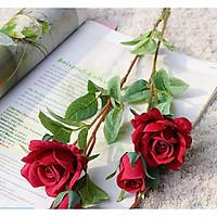 Hoa Giả Hoa Lụa - HOA HỒNG PHÁP Giống Thật - 1 Cành 4 Bông