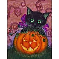 Bimkole 5D Diamond Painting Cat & Pumpkin Full Drill DIY Rhinestone Pasted with Diamond Set Arts Craft Decorations (12x16inch)