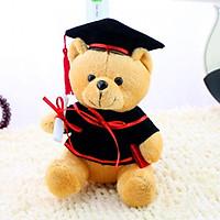 Gấu bông tốt nghiệp - Gấu bông cử nhân. Món quà ý nghĩa tặng người thân, bạn bè