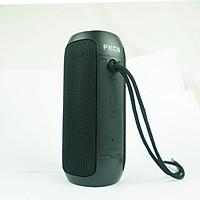Loa Bluetooth không dây di động PKCB âm thanh nổi, MIC tích hợp, Hỗ trợ cuộc gọi rảnh tay & thẻ TF & AUX trong & FM, Khoảng cách Bluetooth 10m - Hàng Chính Hãng