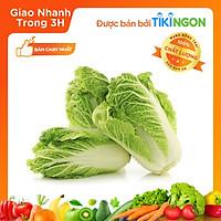 [Chỉ giao HN] - Cải thảo (0.8kg-1.2kg) - được bán bởi TikiNGON - Giao nhanh 3H