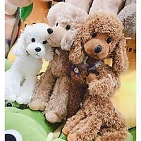 Gấu bông chó poodle lông xù 3 màu dễ thương nâu kem trắng kích thước 35-50-60cm