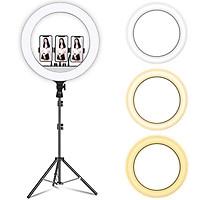 Đèn Led Trợ Sáng Livestream 45cm Model RL 18 Kèm 03 Kẹp Điện Thoại, Có Remote Điều Chỉnh Ánh Sáng, Tặng Kèm 1 Remote Bluetooth Cho Điện Thoại - Hàng Chính Hãng