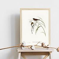 Tranh canvas chim sẻ ngực nâu - Donacola castaneo thorax - phong cách vintage (cổ điển) - B027