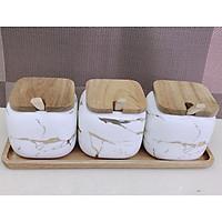 Bộ 3 hũ đựng gia vị trắng vân vàng nắp gỗ Camelia - ANTH304