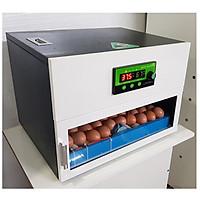Máy ấp trứng mini  70 trứng - Đảo lăn tự động 360 độ