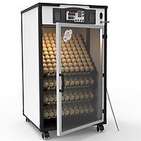 Máy ấp trứng Delta -H4 [400 trứng] - Hàng chính hãng
