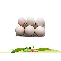 [Chỉ Giao HCM] - Trứng vịt - Hộp 6 trứng