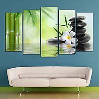 Tranh treo tường, tranh trang trí PP_ NT606 bộ 5 tấm ghép Spa