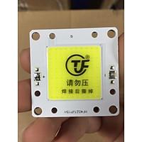 Chipled COB epistar 50w lắp ráp cho đèn LED