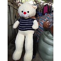 Gấu bông thú nhồi bông Teddy  đủ 1m6 nhiều màu siêu to khổng lồ kèm quà tặng đáng yêu