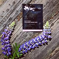 Mặt Nạ Dưỡng Da Chống Lão Hóa Tinh Chất Collagen Hani x Hani/ Black Intensive Collagen Mask Pack