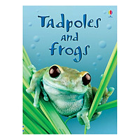 Usborne Tadpoles and Frogs