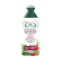 Dầu Gội Làm Sạch & Ngăn Ngừa Gàu Tinh Chất Cây Xô Thơm & Bách Xù Đỏ L'angelica Shampoo Anti-dandruff 250ml