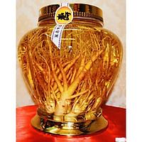 Bình Thủy Tinh Ngâm Rượu Sâm Hàn Quốc 20L - Bình Hình Chum
