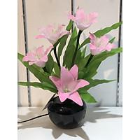 Bình hoa đèn led sợi quang đổi màu - bình hoa trang trí - bình hoa ly hồng cắm điện 220V - BH065
