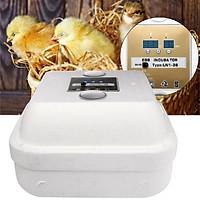 Máy ấp trứng gà kỹ thuật số thiết kế thông minh
