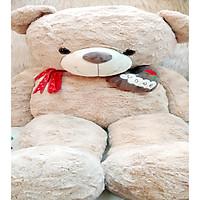Gấu Bông TEDDY XOẮN HOA HỒNG NGỰC TIM LOVE THẮT NƠ