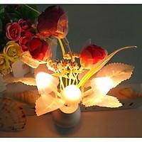 Đèn Ngủ Cảm Biến Ánh Sáng Hình Bình Hoa Ngẫu Nhiên [Tặng Móc Dán Tường Treo Đồ]