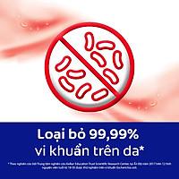Combo 3 Nước rửa tay diệt khuẩn Protex Family 250ml/chai cho gia đình