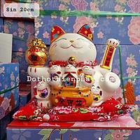 Mèo thần tài thiên kim vạn lượng 8in cao 20 cm