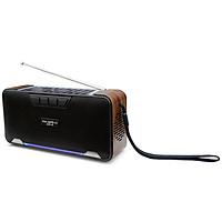 Loa Bluetooth Sạc Năng Lượng Mặt Trời SoundMax AS6 - Hàng Chính Hãng