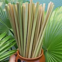 Ống hút cỏ bàng sấy khô - Grass straws - 100 ống