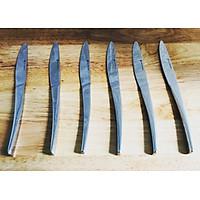 Bộ 6 Dao Vừa  Ăn Món Khai Vị Phụ Kiện Bàn Ăn Inox 304 18/10 Bouscoe  - Stainless Steel 304 18/10 Dessert Knife