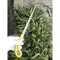 Cưa cành Bonsai cưa cây tiểu cảnh chính hãng BUDDY Nhật Bản