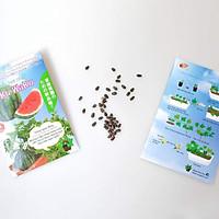 Hạt giống dưa hấu trồng chậu Waku Waku