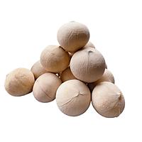 [Chỉ giao HN] Dừa xiêm sọ - combo 5 quả