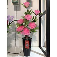 Bình hoa đèn led sợi quang đổi màu - bình hoa trang trí - bình hoa hồng BH139
